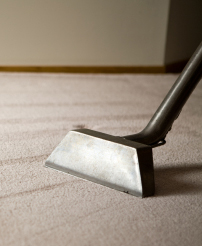 Carpet Cleaners in Orange County