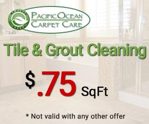 Tile & Grout Cleaning Special