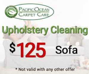 Upholstery Cleaning Special