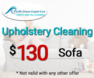 Upholstery-Cleaning special