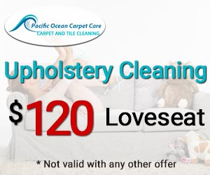 loveseat cleaning $120