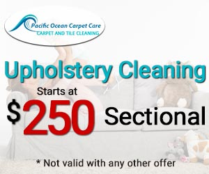 sectional cleaning starts at $250