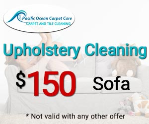 sofa cleaning $150